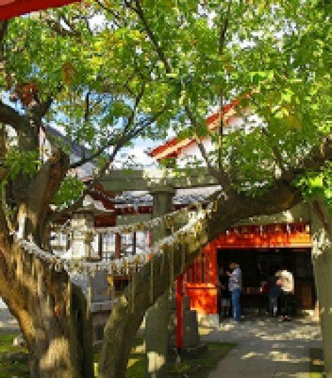 高麗犬(こまいぬ)を回して願懸けをする「湊稲荷神社」