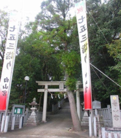 「むすびの神様」と「足の神様」の最強パワー〜愛知県日進市・白山宮