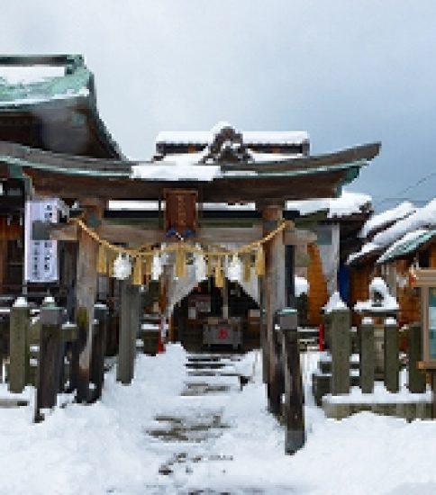 「金刀比羅神社」の狛犬と「開運稲荷神社」の狐に願懸け参り