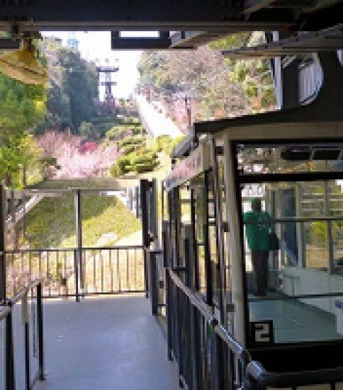 四国最大の名城「松山城」