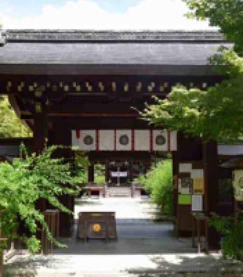 神の水と愛を叶える巨木「梨木神社」
