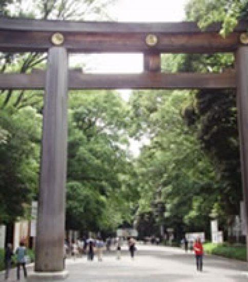 代々木の杜「明治神宮」は都会の避暑地