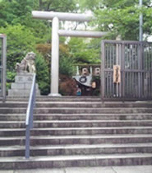 ご神木からパワーをいただける「堀越神社」
