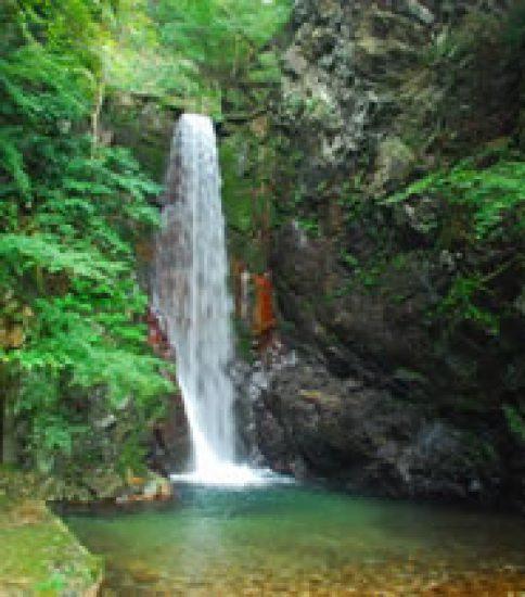 森の中の小さな滝で癒される「有馬温泉鼓ヶ滝」