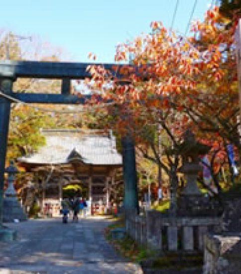 奇岩と巨木、神々がホントに住んでいそうな榛名神社