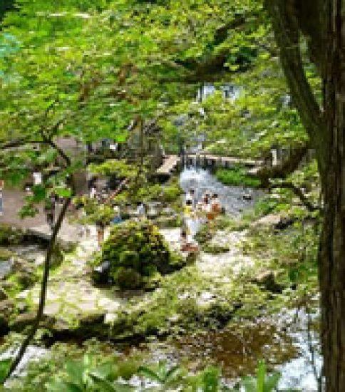 羊蹄山の伏流水が湧き出る北海道・京極町のふきだし公園
