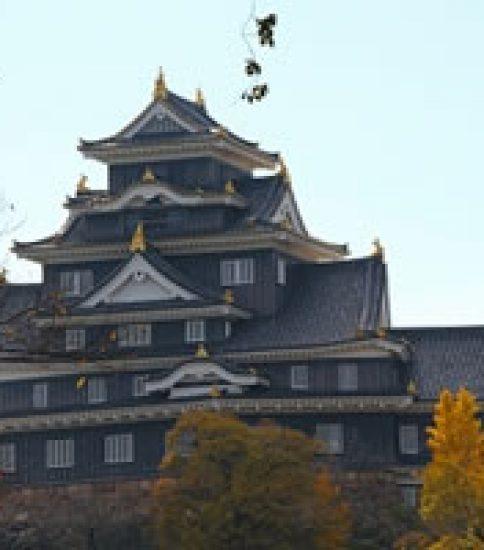 300年の歴史が息づく岡山後楽園