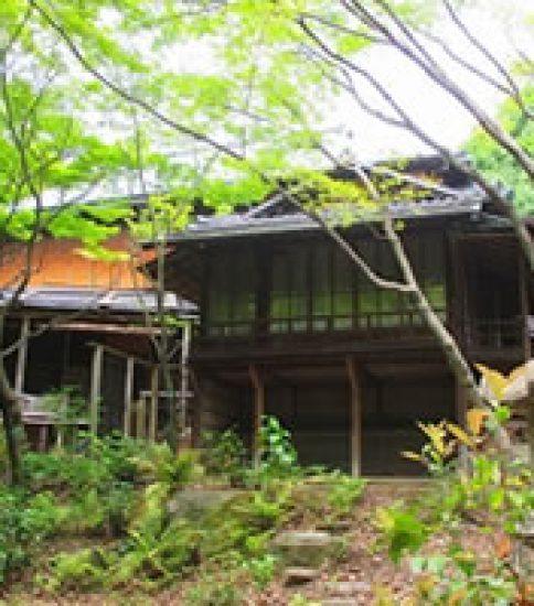 茶道具に見る造形の美~昭和美術館「茶人のデザイン」展