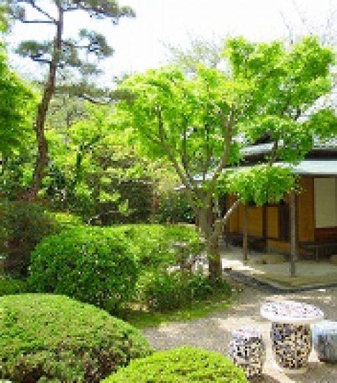 院展の画家たちの名作が一堂に〜桑山美術館「院展の画家たちー近代日本画の開拓と創造—」展